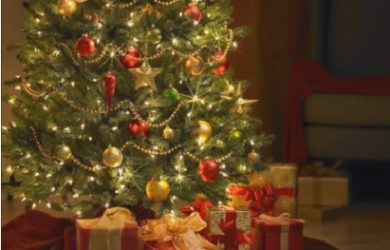 The Christmas Tree that Inspired the Robot