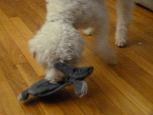 Pupjoy Enemy Rabbit and Bilbo
