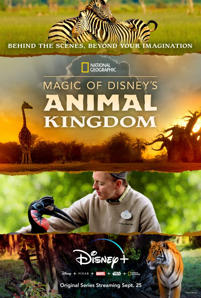 """disney to release national geographic docuseries """"magic"""